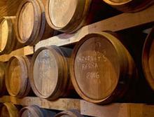 Novo vinarstvo