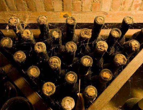 Privatna kolekcija vina