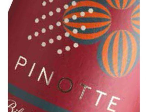 Pinotte, Bikicki prirodno vino