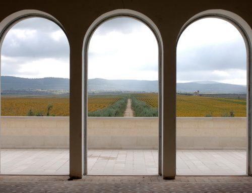 Vinarija Bocca di Lupo / Tormaresca