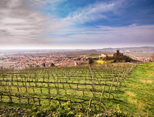 Leksikon vinske Italije