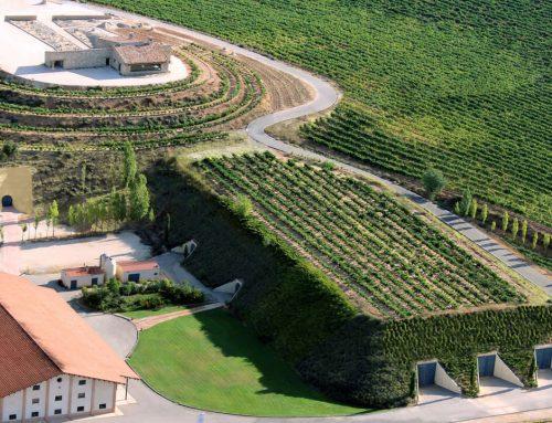Vinarija Valduero, Ribera del Duero